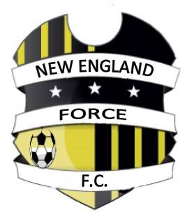 10 SOCCER- NEW ENGLAND FORCE